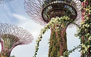 experience-singapore